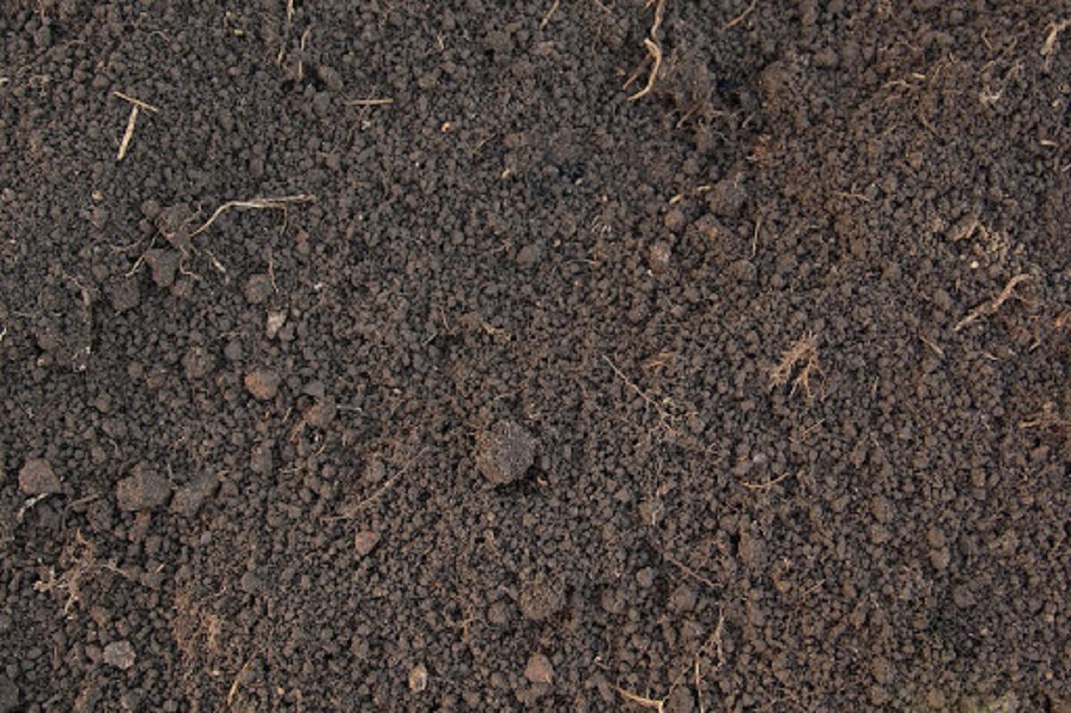 que es el humus suelo fertil