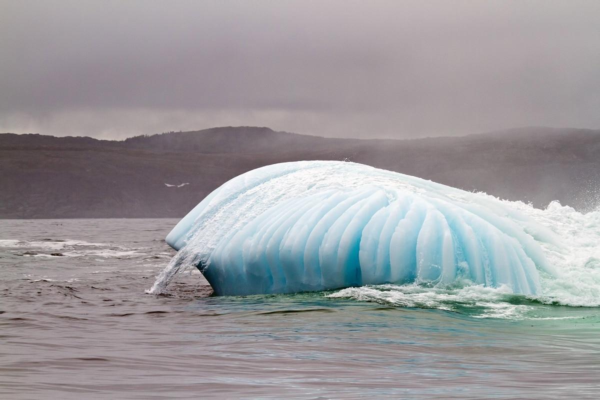 Consecuencias del cambio climatico