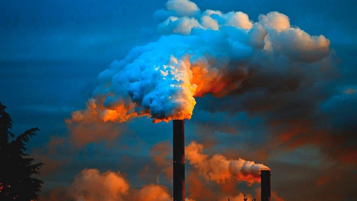 contaminacion biologica